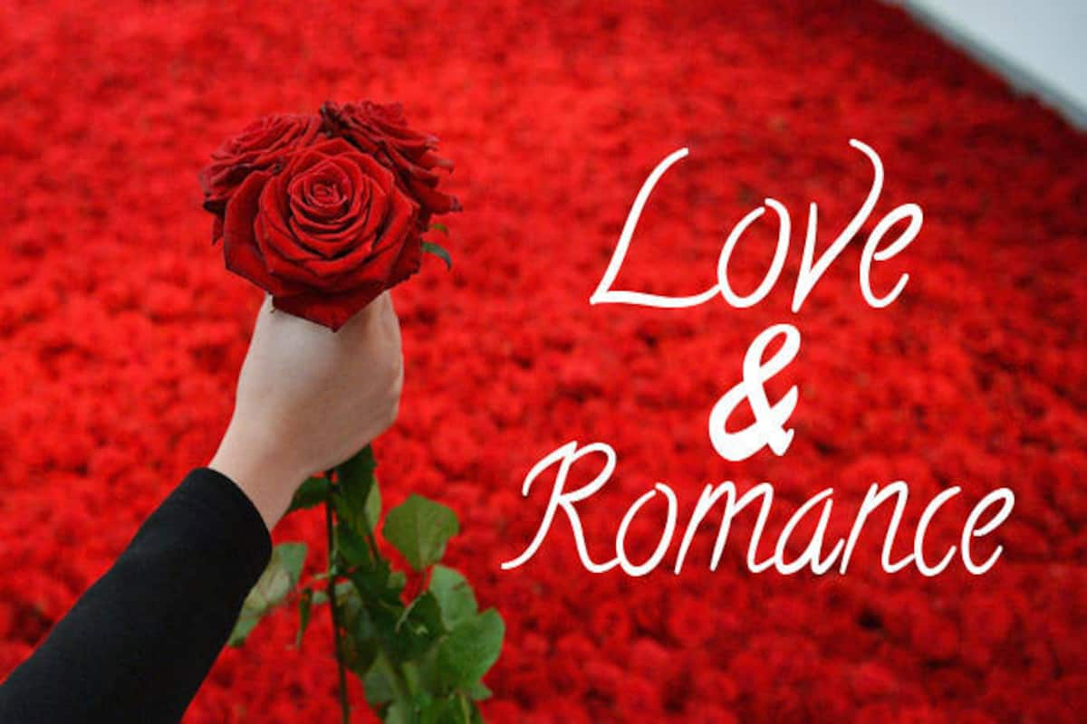 Happy Rose Day 2017 Meaning And Significance Of Different Rose