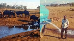 Animals in Kenyan National Park have a caring friend who drives for hours to provide water!