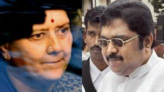 Sasikala's nephew TTV Dinakaran to contest bypoll for RK Nagar seat left vacant after Jayalalithaa's death