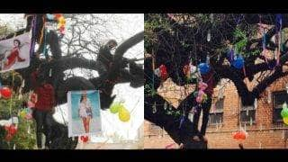 इस पेड़ की Valentine's Day पर पूजा करने पर मिलती है गर्लफ्रेंड