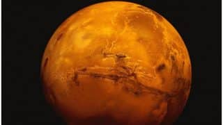 Tree on Mars? Existence of vegetation on Red planet possible, claims alien hunter [Watch Video]
