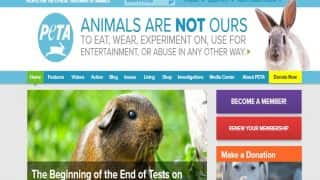 Tamil Nadu panel recommends blocking of PETA sites over 'sexually explicit content'