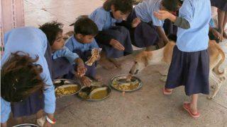 Jharkhand: 24 Simaria Village School Children Taken Ill, Lizard Found in Meal