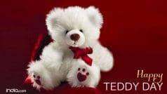 Happy Teddy Day 2017: Importance of Teddy Day and Teddy Bear Colours for the Valentine Week!