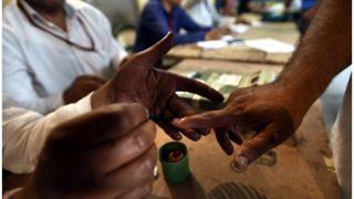BJP Wins Goa Assembly Bypolls, TDP Leading in Andhra Pradesh; AAP Ahead in Delhi