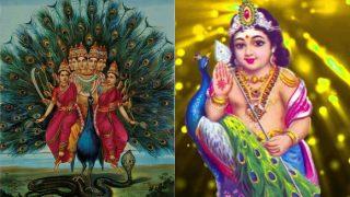 Skanda Sashti 2017 Dates and Images: Significance of God Karthikeya's Kanda Sashti Vratam and Shasti Kavasam Mantra!