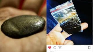 Weed from Himachal sold on Instagram! Marijuana on sale via social media and delivered by speed post