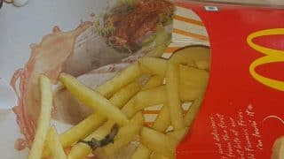 McDonald's says 'taking situation seriously' after pregnant woman finds fried lizard in french fries she ordered