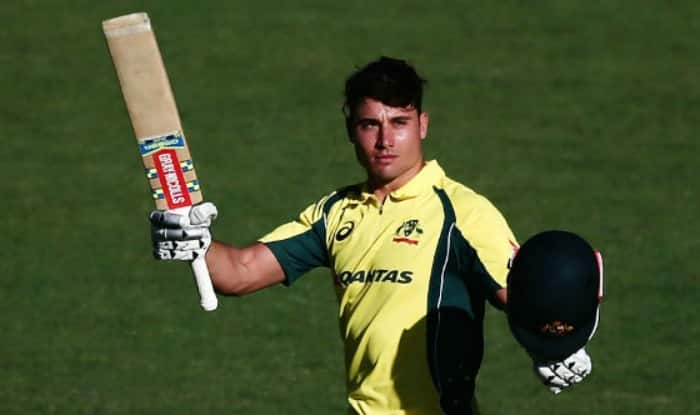 Image result for stoinis injured