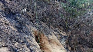Secret tunnel at India-Bangladesh border discovered by BSF: 80 meter long tunnel near Fatehpur post raises alarm