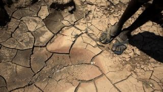 Average Global Temperature to Rise by 3.2 Degrees Celsius in 2100, Warns UN Report