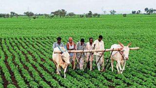 Bihar Fasal Sahayata Yojana: बिहार के 70 हजार किसानों को 226 करोड़ रुपये देगी नीतीश सरकार, चेक करें अपना एकाउंट