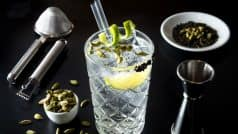 Want to speed up your metabolism? Start drinking Gin!