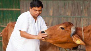 Patanjali products fail test: Acharya Balkrishna rubbishes reports, asks how can natural seed Shivlingi Beej be adulterated