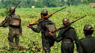 छत्तीसगढ़: सुरक्षा बलों ने 2 साल में मार गिराए 300 माओवादी