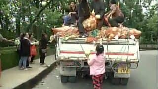Darjeeling: Free vegetables distributed by Manebhanjan Byabsayee Samiti amid indefinite strike by GJM
