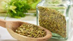 Fennel Tea Benefits: सौंफ की चाय आपको कई सारी चीजों से दिलाती है राहत, जानें इसके अचूक फायदे