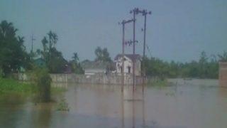 Floods in Assam destroys homes, crop damaged in four districts