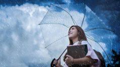 Monsoon: इसी मौसम में फैलता है डेंगू, रहें एलर्ट, ऐसें करें बचाव की तैयारी...