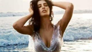 Nargis Fakhri flaunts sexy cleavage in hot sparkling sequin bikini! See actress' bold picture