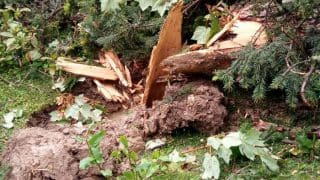 Kashmir: 7 dead after Gondola tower in Gulmarg city collapses