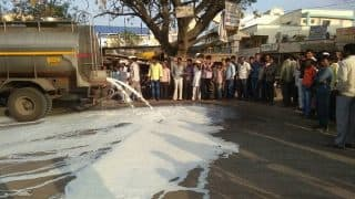 Mumbai: Vegetables, fruits, milk supply get hit due to farmers' protest in Maharashtra