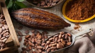 We bet you didn't know these facts about cocoa!