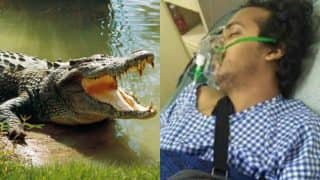 Shocking! Bengaluru entrepreneur who lost his arm in crocodile attack may face legal charges for trespassing