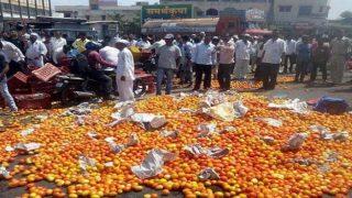 महाराष्ट्र में किसानों की हड़ताल खत्म,किसानों को मिला कर्ज़माफी का आश्वासन