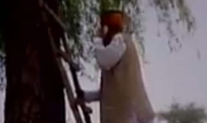 To make a call, Union minister climbs tree in Bikaner village