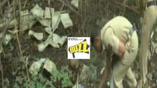 Money doesn't grow on trees? Old Rs 500 notes worth Rs 10 lakhs found hanging on tree in Aurangabad