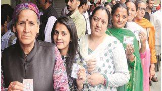 शिमला नगर निगम चुनाव नतीजे: यहां देखें जीते हुए प्रत्याशियों की पूरी लिस्ट