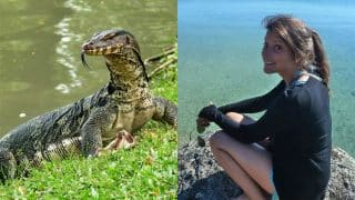 Thailand's Koh Tao 'Murder Island': Tourist's body found in jungle, half eaten by lizards
