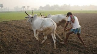 UP Administration Waives Off 1 Paisa From Loan of Mathura Farmer