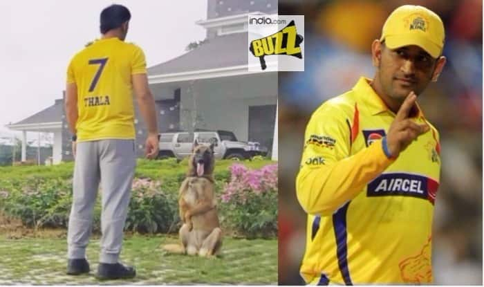 MS Dhoni is Back to Play for Chennai Super Kings again