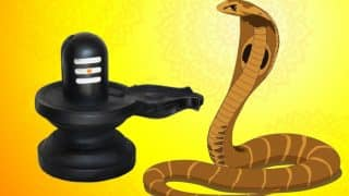 Nag Panchami 2017 Date: Importance, Significance, History of The Auspicious Snake Festival