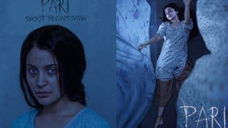 Here's What Anushka Sharma's Pari Is All About! Read Exclusive Details