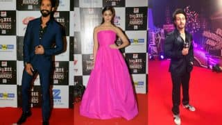 Big Zee Entertainment Awards 2017 Winners List: Shahid Kapoor, Alia Bhatt, Tiger Shroff Walk Away With Trophies
