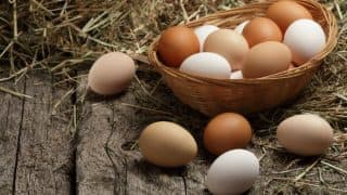 Health Benefits of Eggs: 5 Reasons to Eat Eggs Every Day