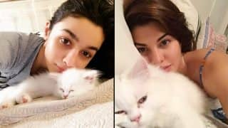 Alia Bhatt, Jacqueline Fernandez, Sunny Leone And More Bollywood Celebs' Pics With Their Cats Will Turn Your Heart Into Mush This International Cat Day
