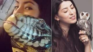 This Animal YouTuber is in Love with Reptiles: See Pictures & Videos of the Exotic Pet Lover, Emzotic