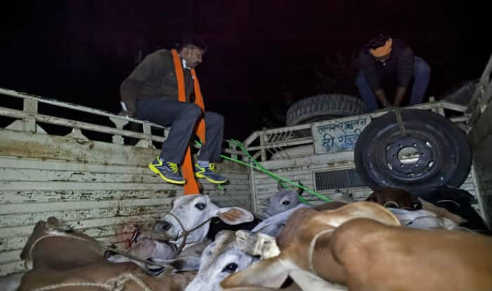 Gau rakshaks beaten up in Ahmednagar