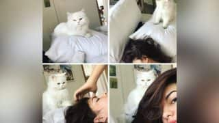 Jacqueline Fernandez And Her Pet Cat MiuMiu Take Over Instagram - View Pics