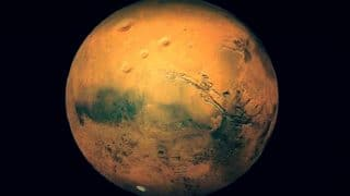 Mars Research Crew Emerges After 8 Months of Isolation