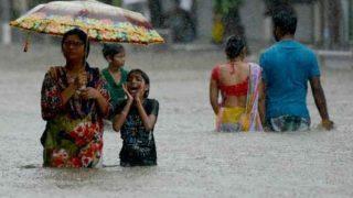 Leptospirosis Outbreak Scare After Mumbai Rains: Take an Antibiotic ASAP if You Walked in Mumbai Floodwater