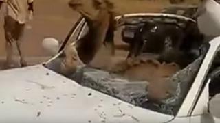 Camel died after colliding with car in Barhmer, 3 injured | बाड़मेर: ऊंट से हुई गाड़ी की टक्कर, तीन लोग घायल