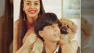 Gauri Khan Takes Us Down Memory Lane By Sharing A Throwback Picture With Shah Rukh Khan