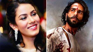 Mira Rajput Has The Sweetest Reaction To Shahid Kapoor's Maharawal Ratan Singh Avatar From Padmavati - Exclusive