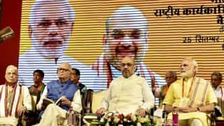 PM Narendra Modi Vows to Continue Fight Against Corruption at BJP National Executive Meet, Hails Government For Doklam Settlement
