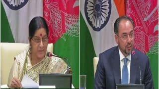 India, Afghanistan Vow to Fight Terrorism Together, Kabul Pitches For Delhi's Permanent Membership For UN Security Council